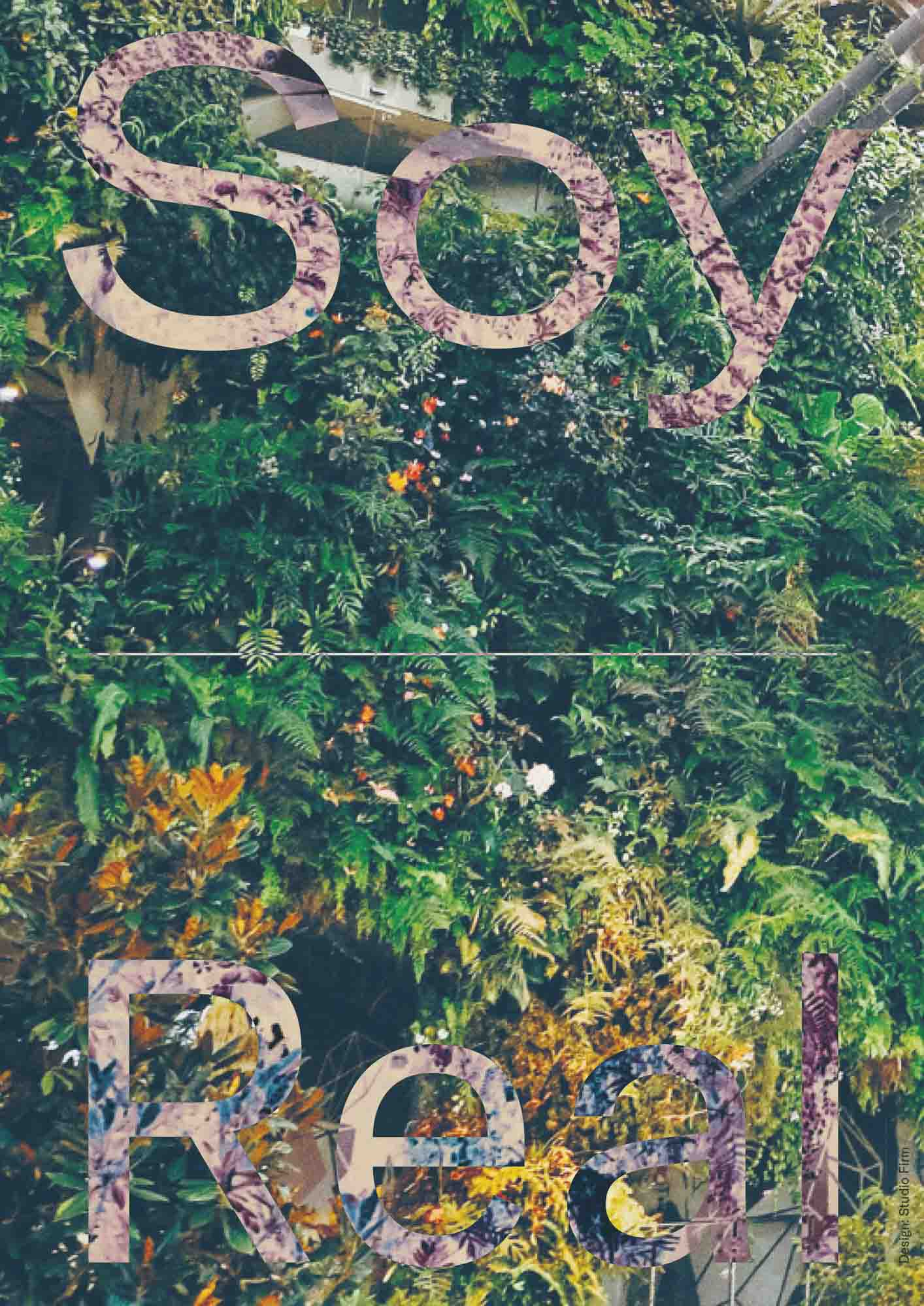 Visual Identity of Soy Real Estate TDC ECV